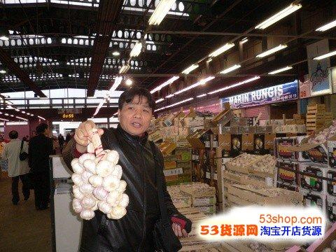法国伦吉斯国际农产品市场 2