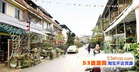广西花鸟交易市场