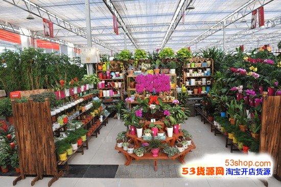 唐山盛华世家花卉市场内景